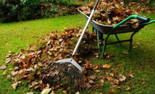 Уход за садом осенью подготовка к зиме