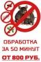 Городская служба дезинфекции в Санкт-Петербурге
